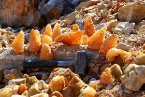 26 Amazing Poler Chips