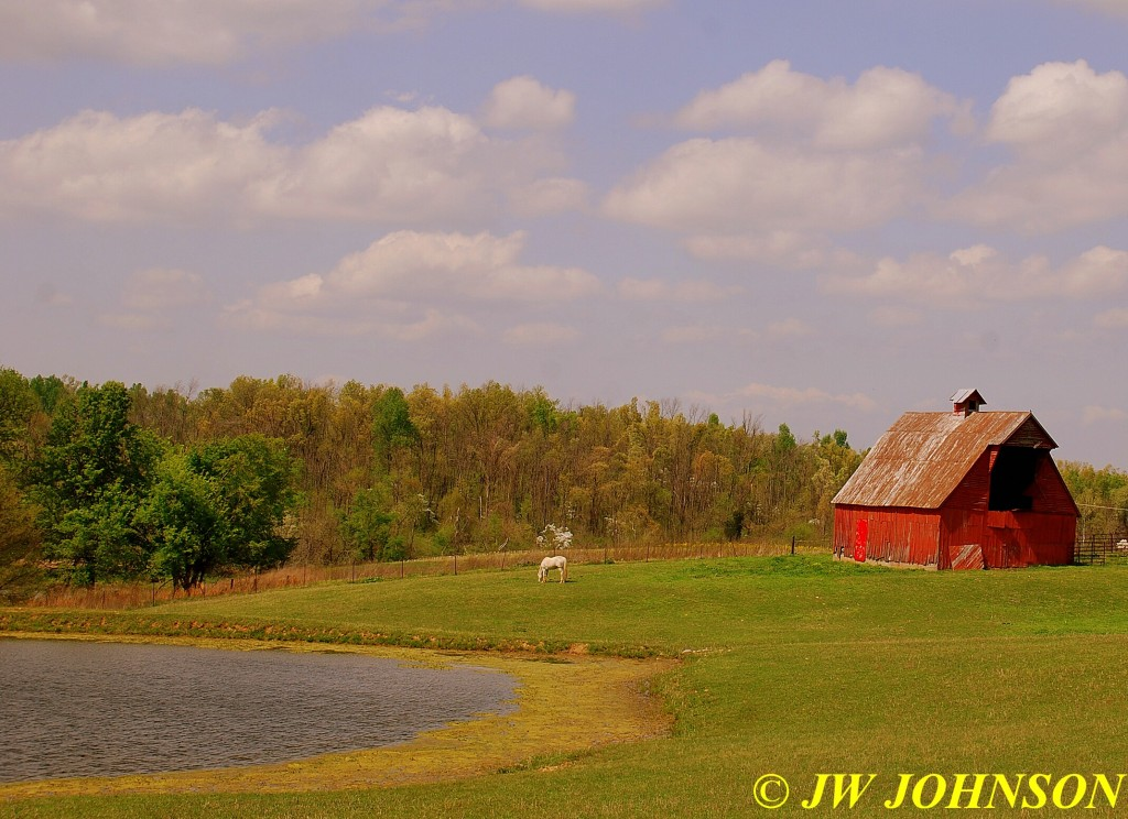 01 Red Barn and Horse