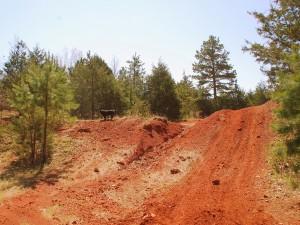 08 Old Tiff Mines