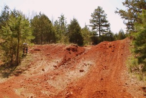 09 Hillside We Dug Into