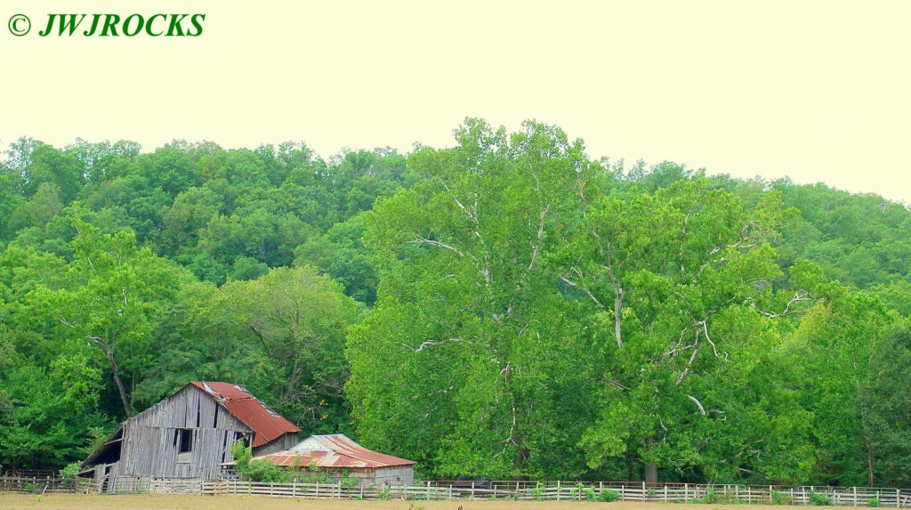 15 Barns and Trees
