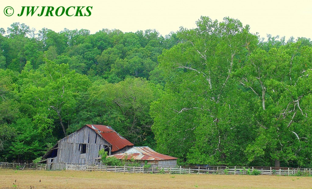 16 Barns and Trees