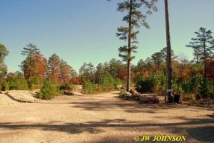 25 Sweet Surrender Park Lot
