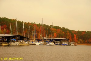 50 Sailboats & Fall Colors