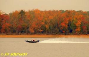 51 Speedboat