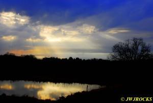 10 Sunbeams Landon Road
