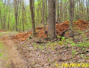 15 Dig Area Across Road