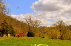62 Color in Rural Fields