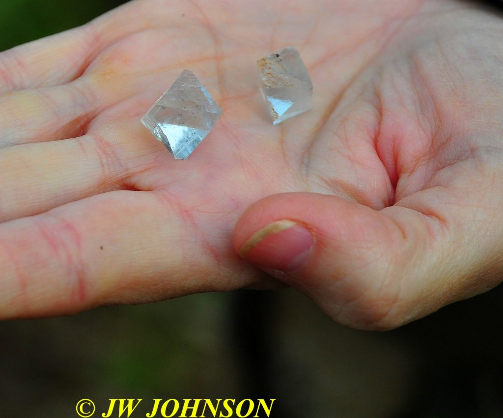 28-diamonds-in-palm-of-janyce